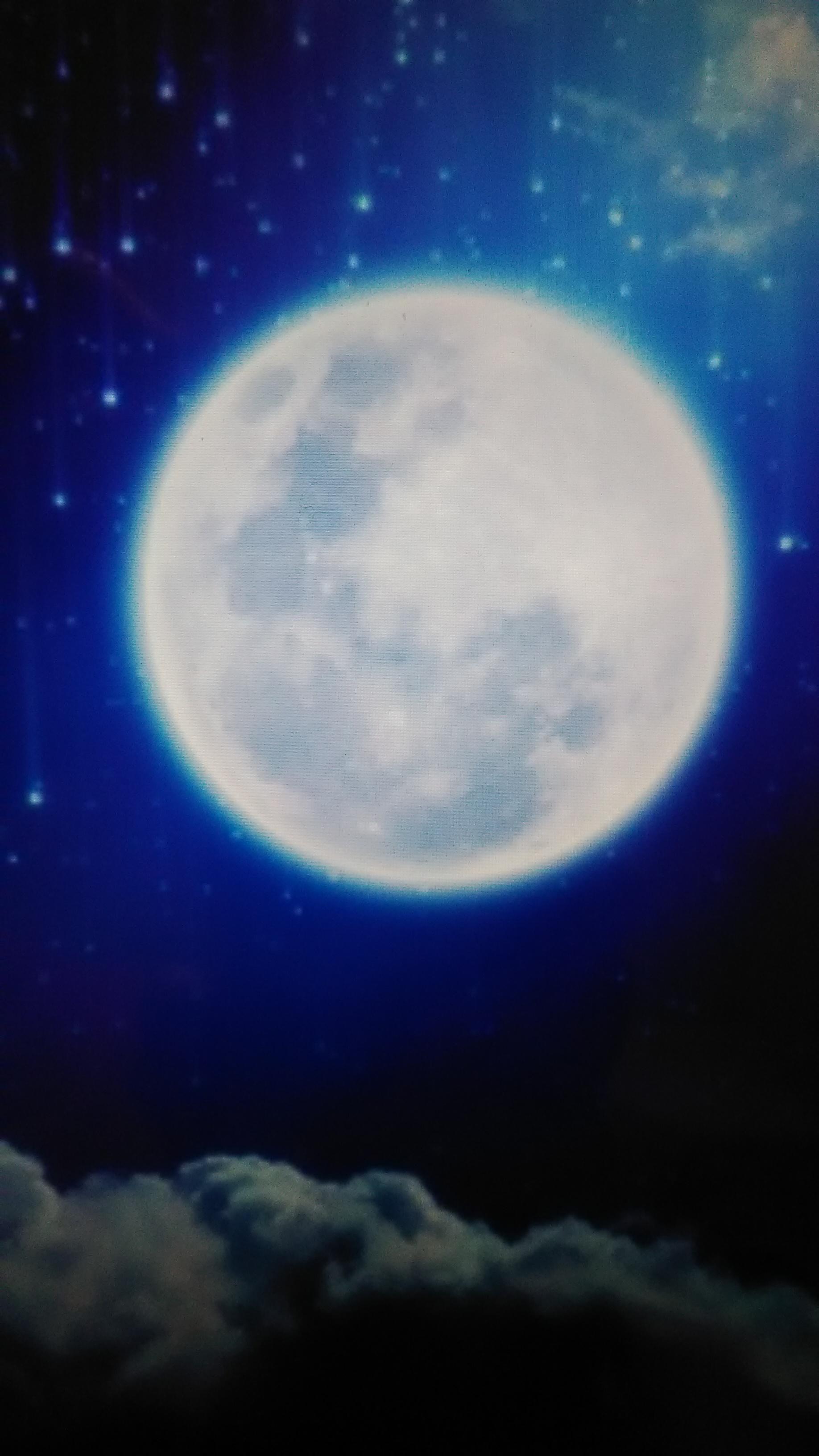 お ひつじ 座 満月